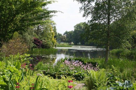 Glansevern Gardens