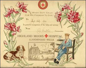 llandrindod-red-cross-certificate